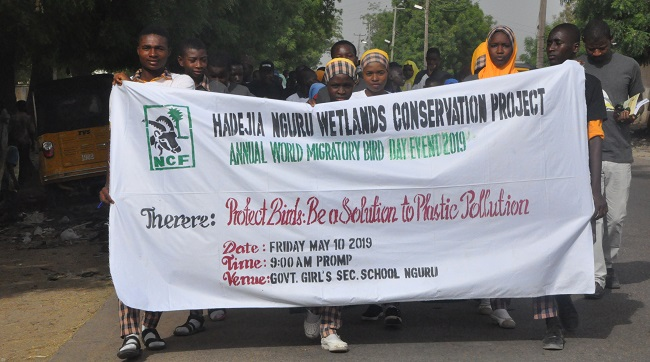 Nguru vultures conservation